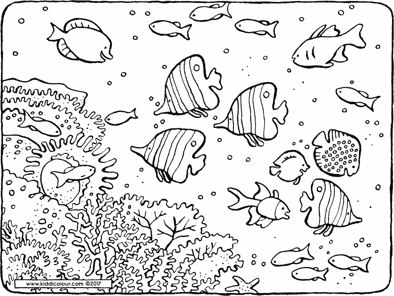 fish in the sea colouring page drawing picture 01k