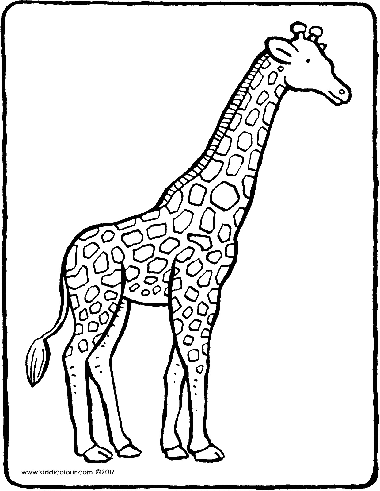 giraffe colouring page drawing picture 01V