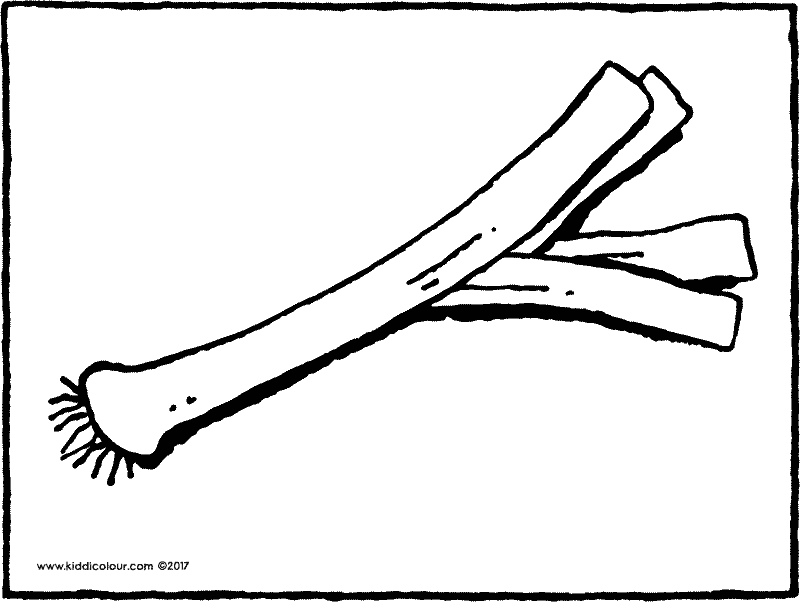 leek colouring page drawing picture 01k