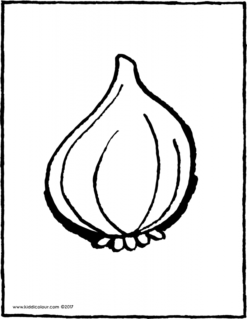 onion colouring page drawing picture 01V