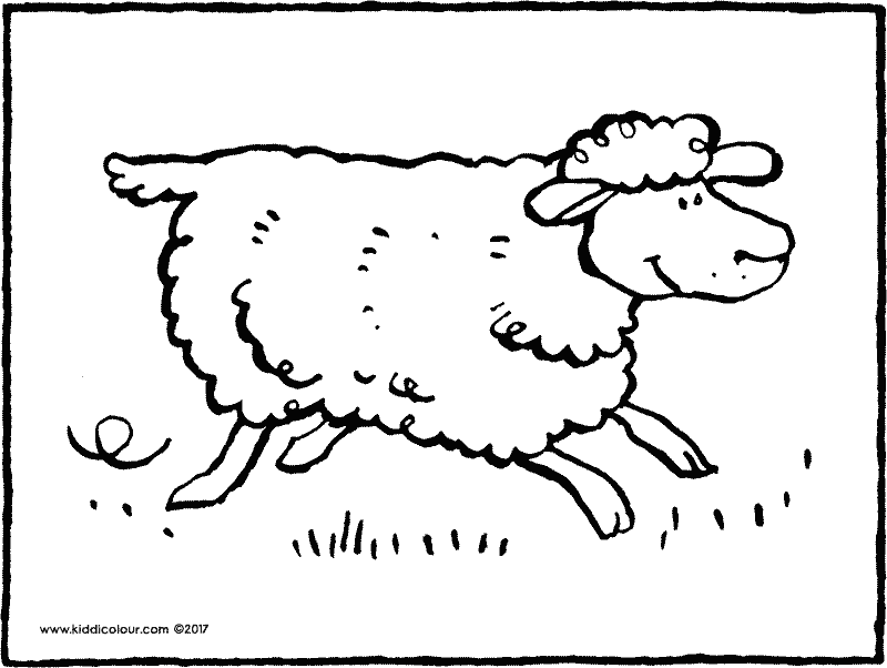 running sheep colouring page drawing picture 02k