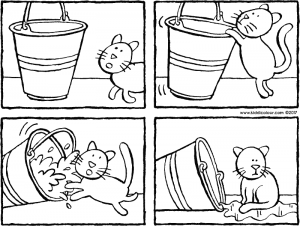 bucket and cat