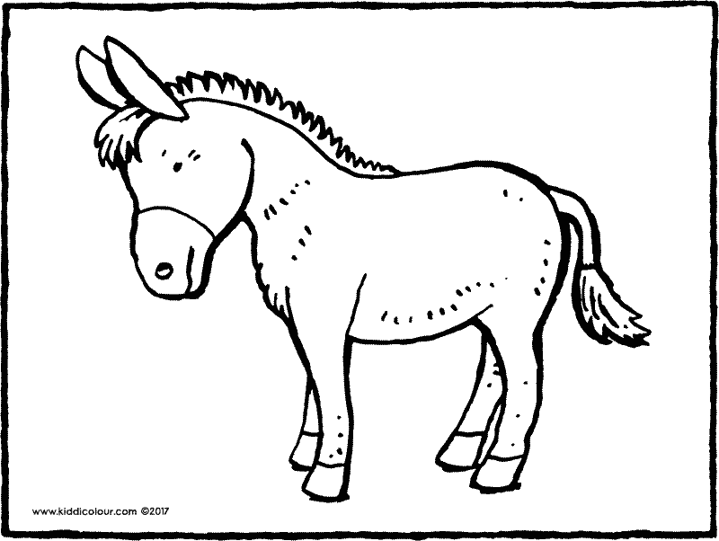 Honkey donkey coloring pages coloring pages for Donkey coloring pages free