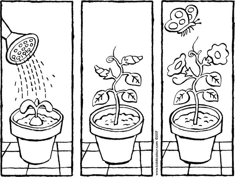 story flowers in a pot colouring page 01k