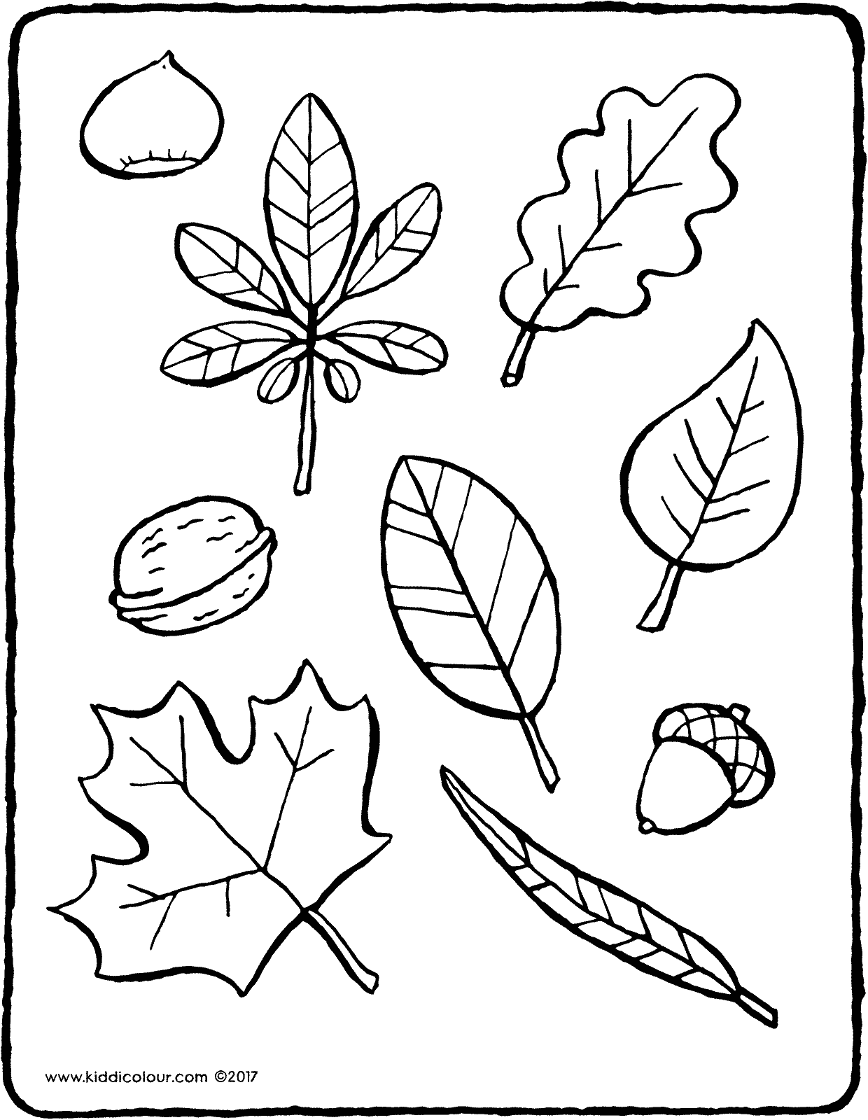 autumn leaves colouring page page drawing picture 01V