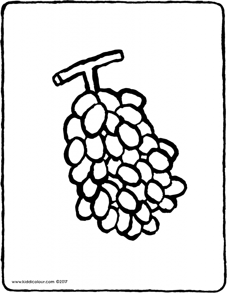 grapes colouring page page drawing picture 01V