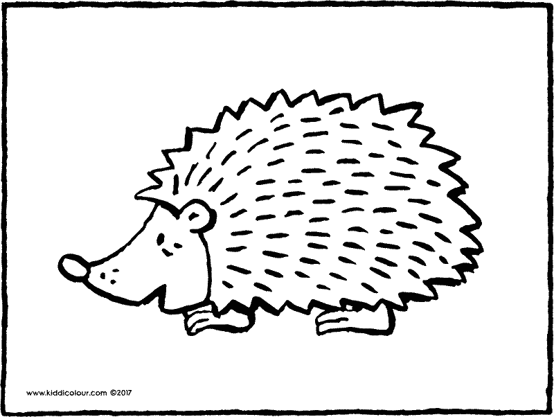 hedgehog colouring page page drawing picture 01k