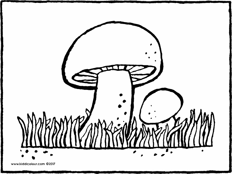 mushroom colouring page page drawing picture 01k
