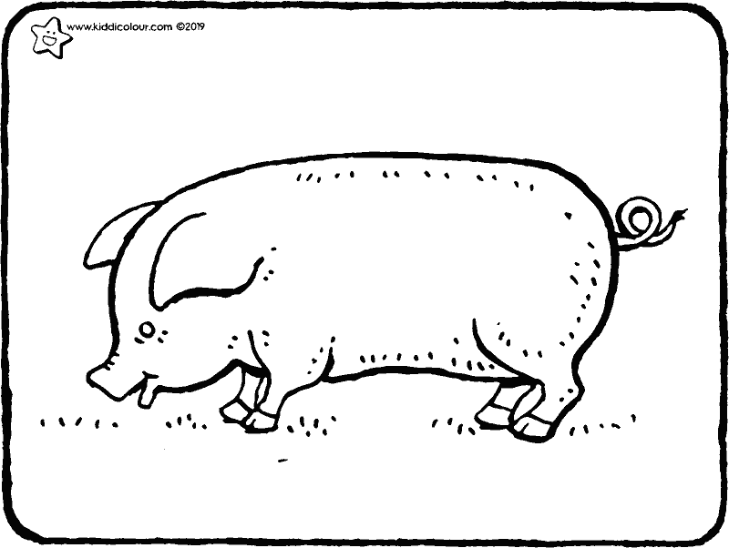pig colouring page drawing picture 01k