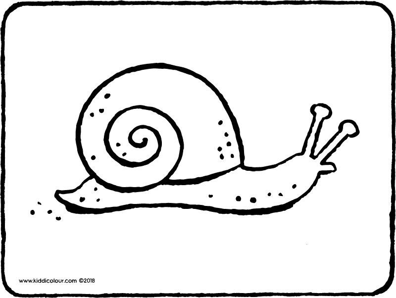 snail colouring page drawing picture 01k