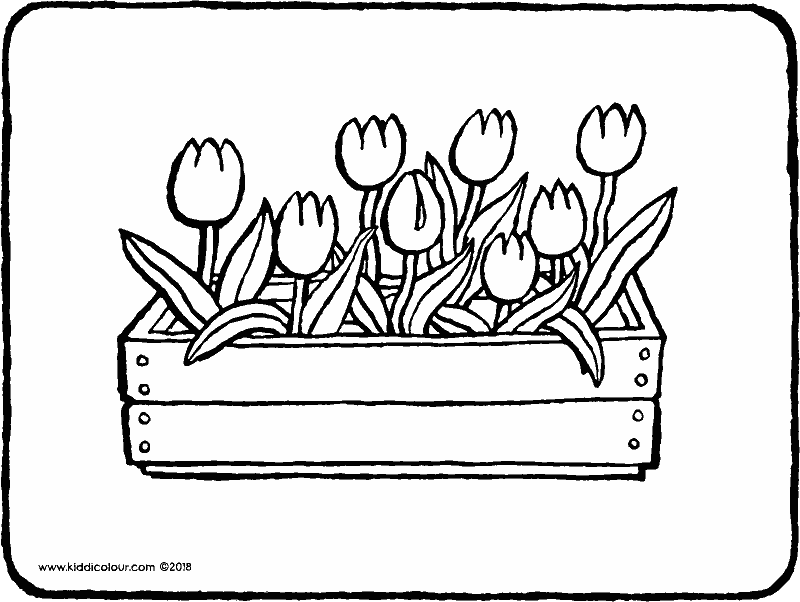 tulips in a wooden planter colouring page drawing picture 01k