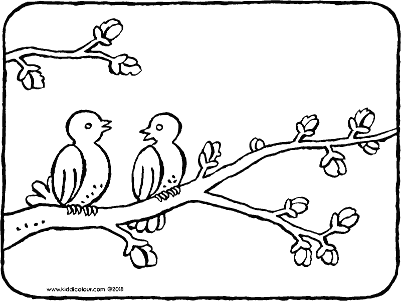 two birds on a branch colouring page drawing picture 01k