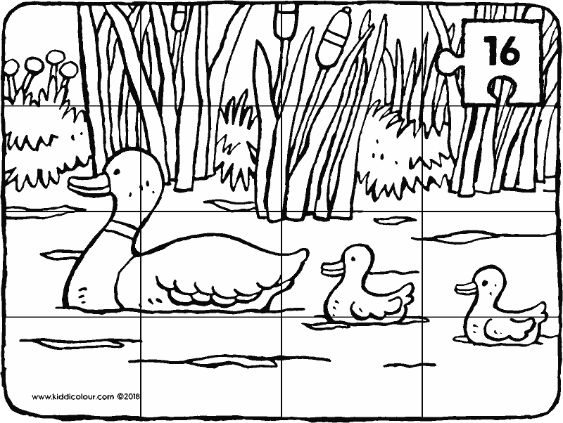 ducks in the water puzzle 16 pieces colouring page drawing picture 01k