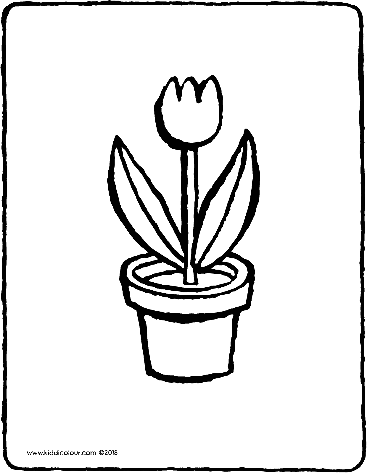 flowerpot with tulip colouring page drawing picture 01V