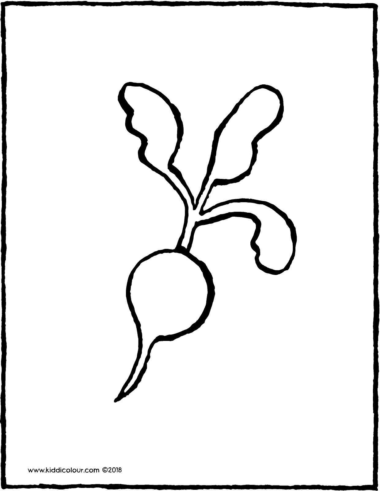 radish colouring page drawing picture 01V