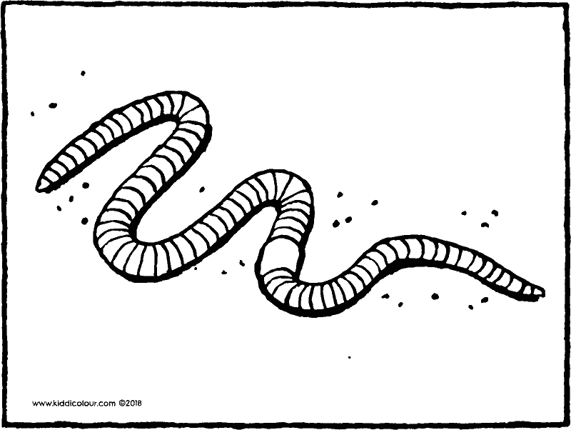 worm colouring page drawing picture 01k