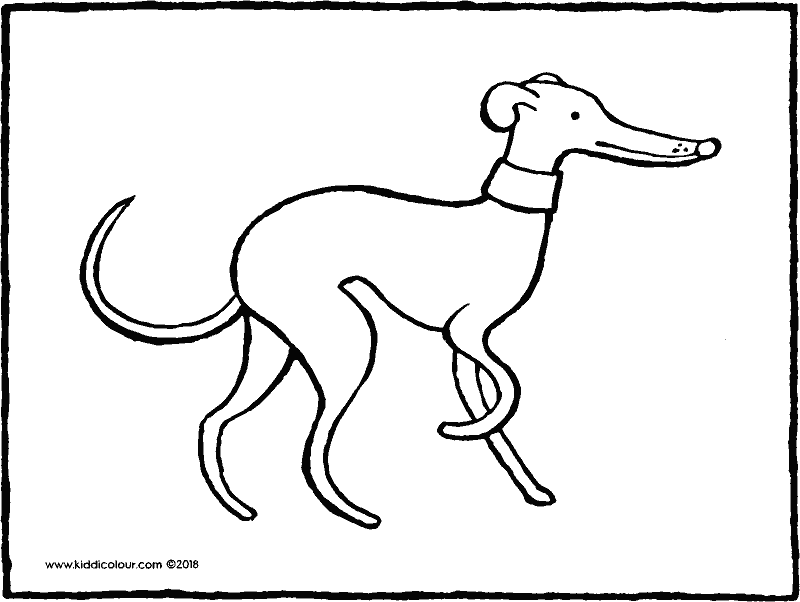 greyhound colouring page drawing picture 01k