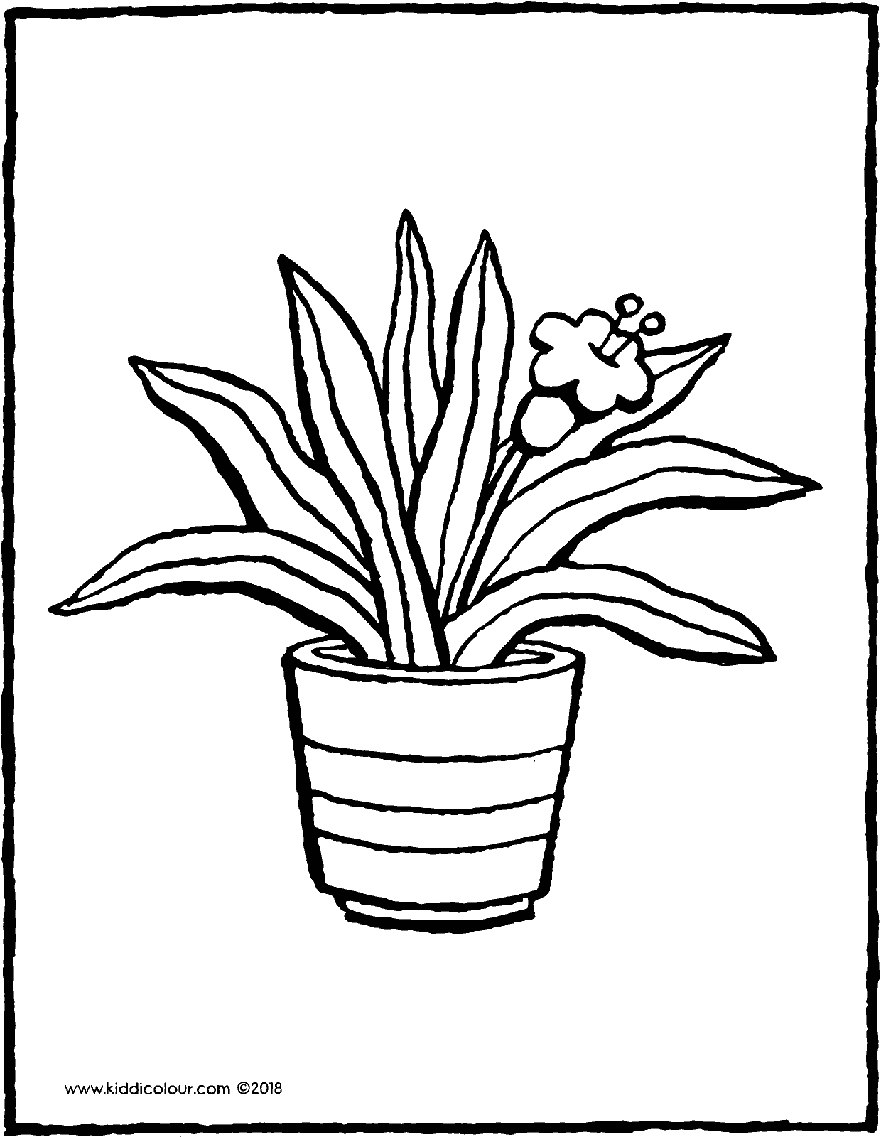 houseplant colouring page drawing picture 01V