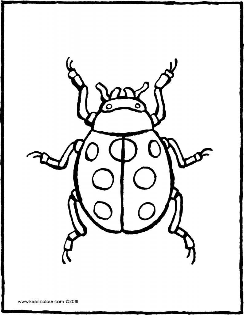 ladybird colouring page drawing picture 01V