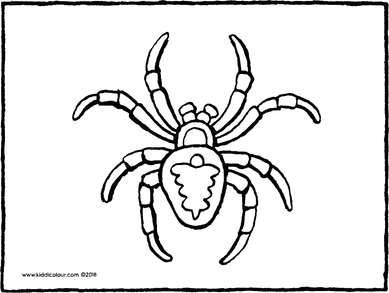 spider colouring page drawing picture 01k