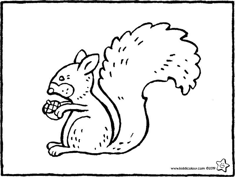 squirrel with acorn colouring page drawing picture 01k