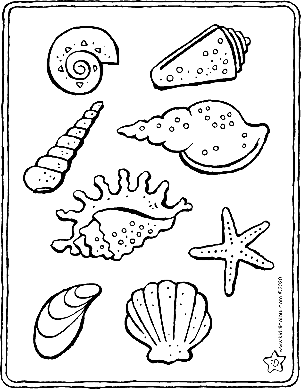 shells colouring page drawing picture 01V