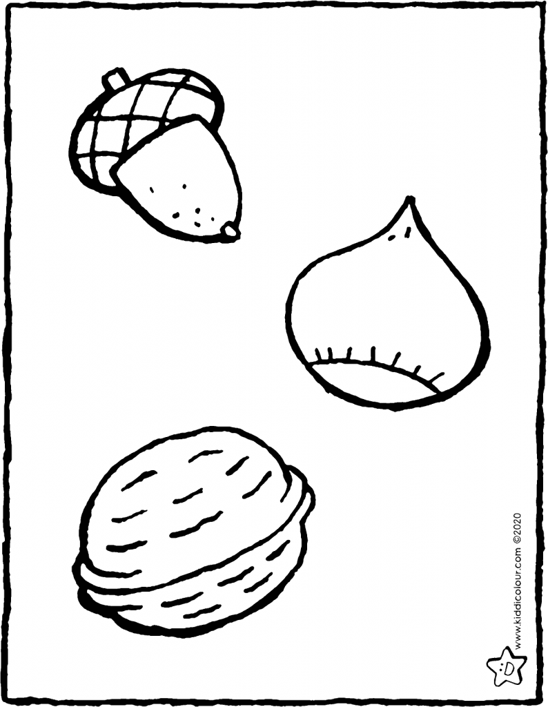 acorn, chestnut and walnut colouring page drawing picture 01V