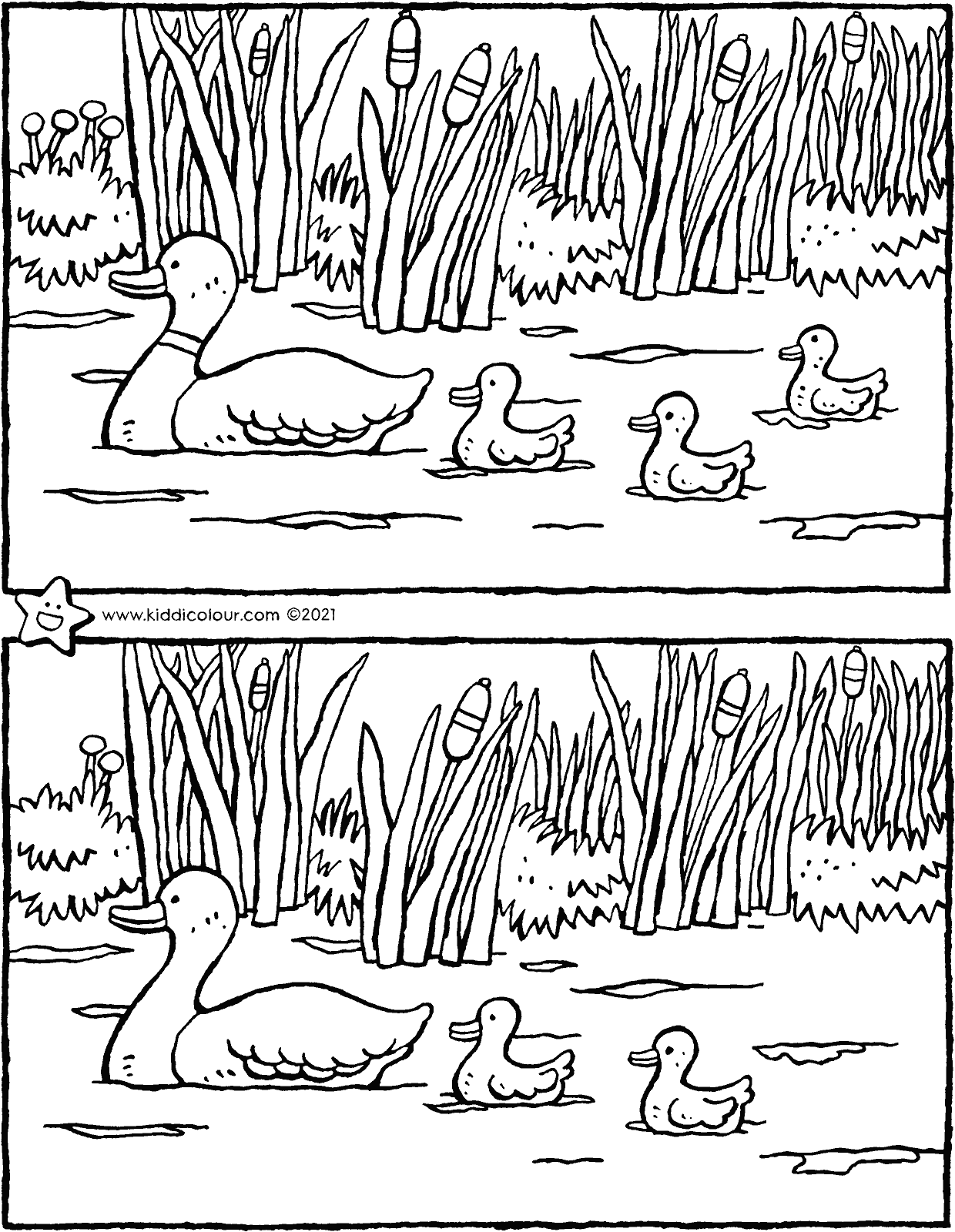 spring – spot the 5 differences colouring page drawing picture 01V