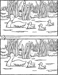 spring – spot the 5 differences
