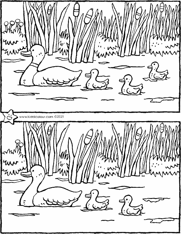 spring – spot the 5 differences colouring page drawing picture 01k