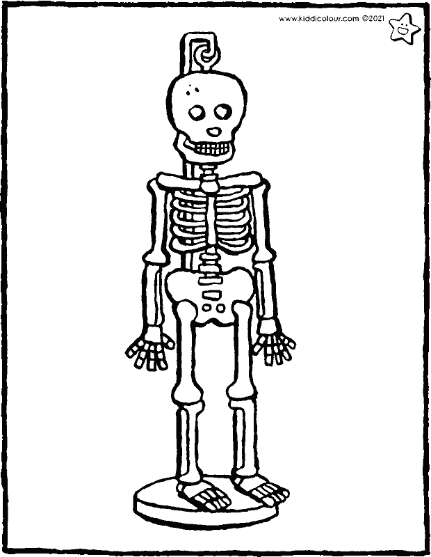 skeleton for in the classroom